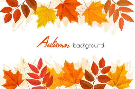 Autumn background with leaves. Vector Vector Illustration