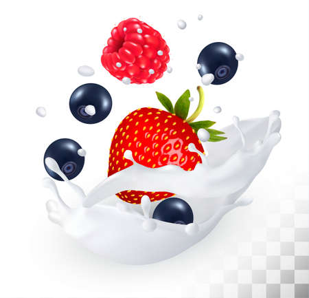 Strawberry and blueberry and raspberry in a milk splash on a transparent background. Vector icon.