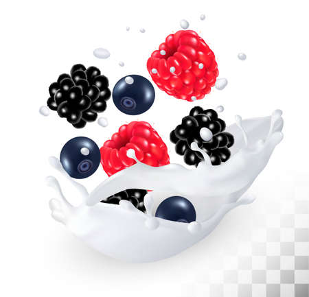ear drop: Blackberry and blueberry and raspberry in a milk splash on a transparent background. Vector icon. Illustration