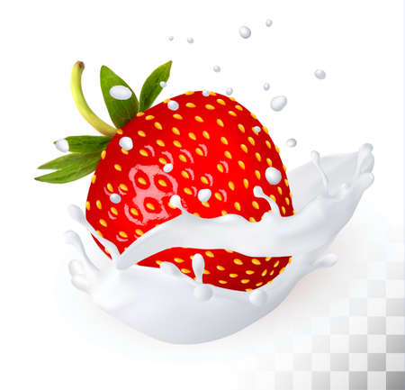 Red strawberry in a milk splash on a transparent background. Vector.
