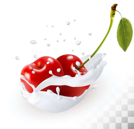 fruit stem: Couple of cherries in a milk splash on a transparent background. Vector.