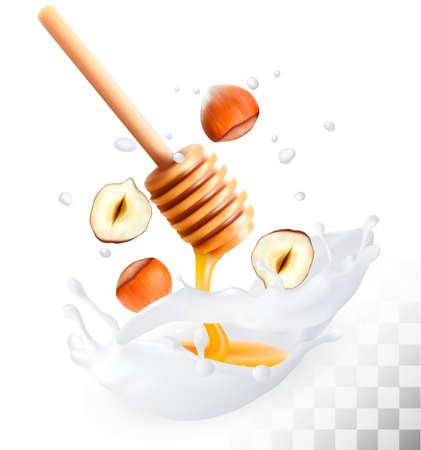 organic fluid: Hazelnut and honey in a milk splash on a transparent background. Vector. Illustration