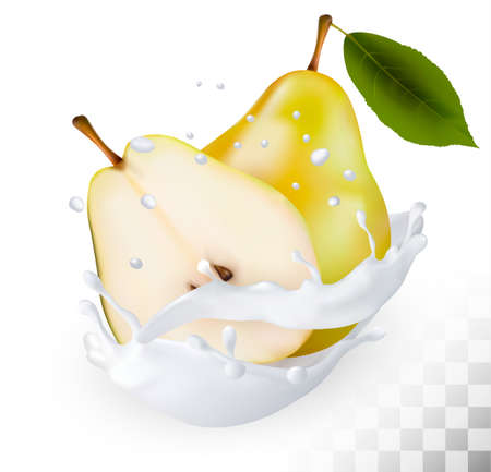 Ripe yellow pears in a milk splash on a transparent background. Vector. Illustration