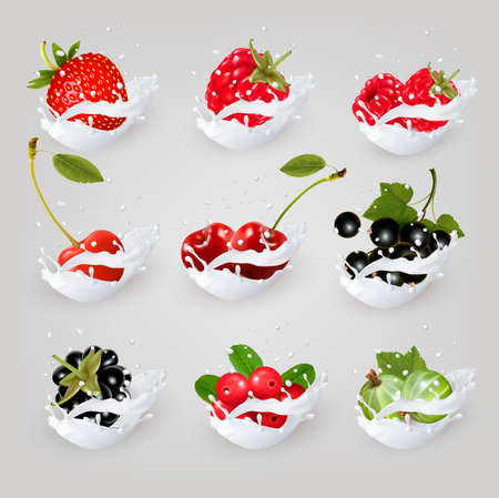 berries: Big collection icons of fruit and berries in a milk splash. Raspberry, blackberry, strawberry, cherry, blackcurrant, blueberry.