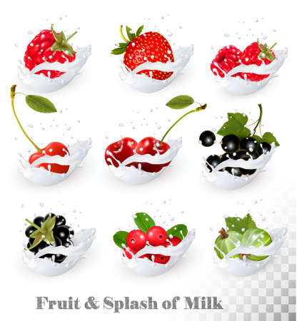 plant to drink: Big collection of fruit and berries in a milk splash. Raspberry, blackberry, strawberry, cherry, blackcurrant, blueberry. Vector Set 2.