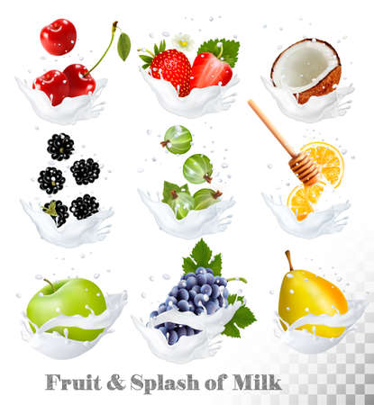 coconuts: Big collection of icons of fruit and berries in a milk splash. Pear, orange, strawberry, grapes, apple, blackberry, cherry, coconut, honey, gooseberry Vector Illustration
