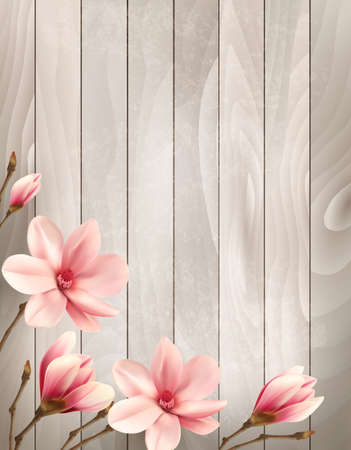 plant delicate: Nature spring background with beautiful magnolia branches on wooden sign. Vector. Illustration