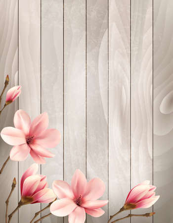 magnolia: Nature spring background with beautiful magnolia branches on wooden sign.