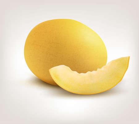 honeydew: Yellow Honeydew Melon on White Background. Vector Illustration