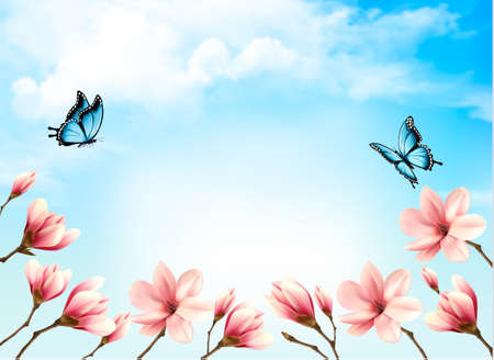 springtime background: Nature spring background with beautiful magnolia branches on blue sky. Vector.