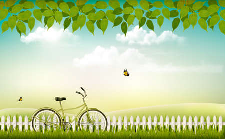 alpine plants: Spring nature meadow landscape with a bicycle. Vector.