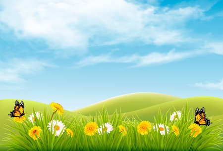 beautiful landscape: Beautiful nature landscape layout with flowers and  flies. Illustration