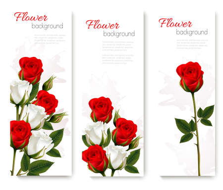 leaf: Set of holiday banners with beautiful red and white flowers. Vector.