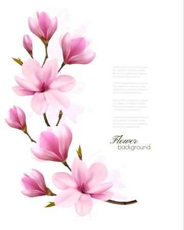 핑크 목련의 꽃 분기와 자연 배경입니다. 벡터 일러스트