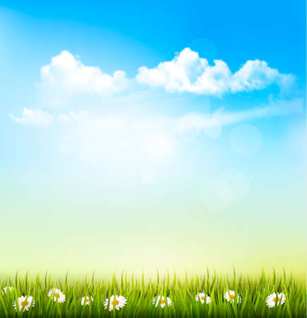 sky blue: Spring Nature Background With A Green Grass And Blue Sky With Clouds. Vector.