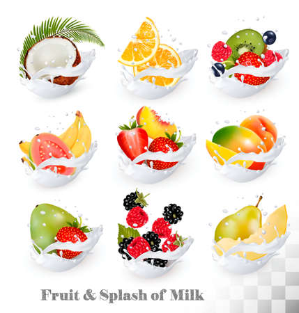 Big collection icons of fruit in a milk splash. Guava, coconut, mango, peach, strawberry, cherry, blueberry, banana, melon, orange, raspberry. Vector Set Ilustracja