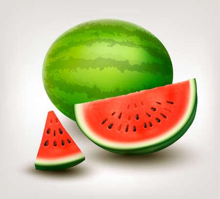 sliced fruit: Watermelon. Vector