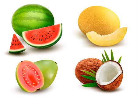ripe: Collection of fruit and berries. Watermelon, honeydew, guava, coconut. Vector Set.