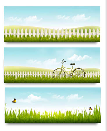 summer nature: Three nature summer meadow landscape banners with grass and butterflies. Vector.