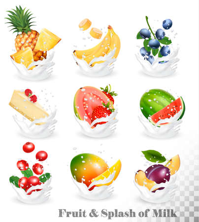 plant to drink: Big collection of fruit in a milk splash. Pineapple, mango, banana, pear, watermelon, blueberry, guava, strawberry, cheesecake, grawberry, raspberry. Vector Set 10.