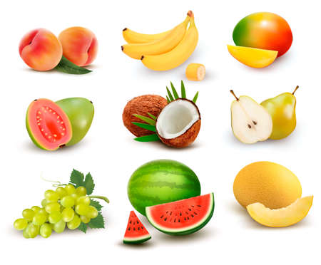 Collection of fruit and berries. Watermelon, grape, pear, banana, mango, coconut, peach, guava. Vector Set.