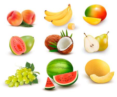 Het verzamelen van fruit en bessen. Watermeloen, druif, peer, banaan, mango, kokosnoot, perzik, guave. Vector Set. Stockfoto - 78147728