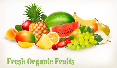 Big collection of different fresh fruit. Vector. Illustration
