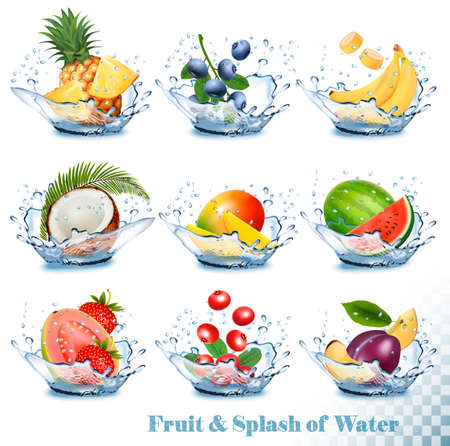 Big collection of fruit in a water splash. Pineapple, mango, banana, pear, watermelon, blueberry, guava, strawberry, coconut, grawberry, raspberry. Vector Set Vettoriali