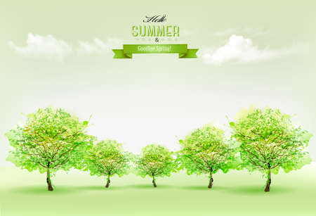 summer nature: Summer nature background with green trees and landscape. Vector.