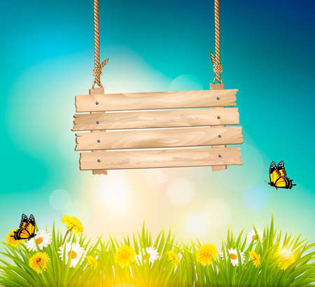 summer nature: Summer nature background with green grass and wooden sign. Vector Illustration