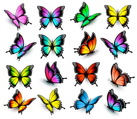 style: Colorful butterflies set. Vector.