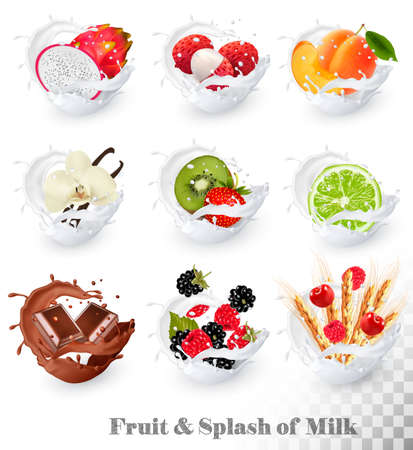 Set of different milk splashes with fruit, nuts and berries. litchi, strawberry, raspberry, blackberry, apricot, blueberry, lime, kiwi, vanilla, dragonfruit. Vector Set.