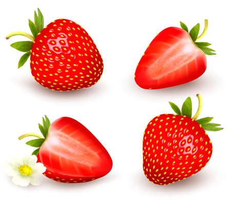 Een set van verse aardbeien. Vector illustratie.