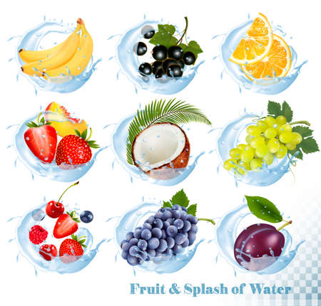 Big collection of fruit in a water splash icons. Banana, coconut, peach, orange, plums, strawberry, grapes, raspberry, blackberry, blueberry, cherry. 向量圖像