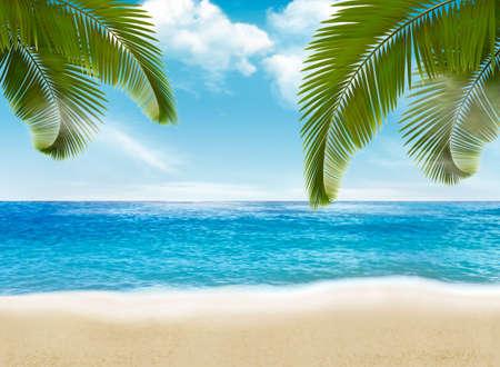 Palm leaves on beach vector illustration.