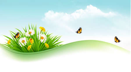 Nature background with grass and flowers and butterflies. Vector illustration.