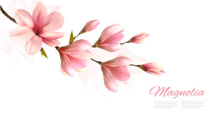 Nature background with blossom branch of pink magnolia. Vector