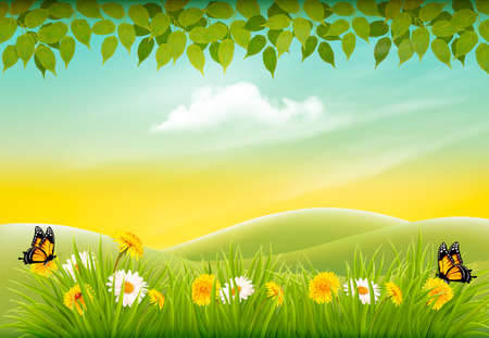 Spring nature landscape background with flowers and butterflies vector illustration