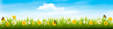 Spring nature landscape banner with flowers and butterflies.