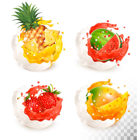 Collection of fruit in a milk and jiuce splash. Mango, pineapple, strawberry, watermelon. Vector Set 스톡 콘텐츠 - 100015559