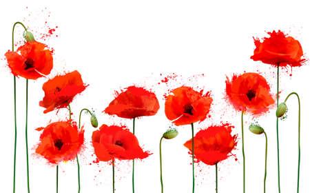 Piękne tło z czerwonymi kwiatami maku. Wektor.
