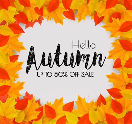 Autumn Sales Frame With Colorful Leaves. Vector.