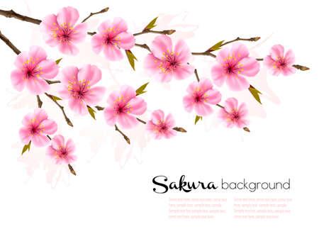 Spring background with Sakura cherry branch. Illustration