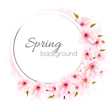 Spring background with pink blooming flowers.