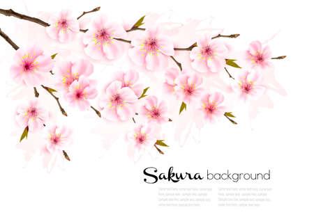 Spring nature background with sakura branch.