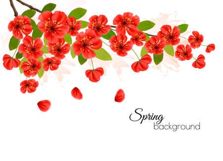 Nature spring background with spring blossom of sakura.