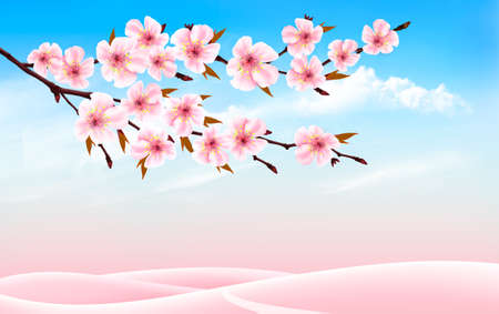 Spring nature background with cherry branch and blue sky with clouds.