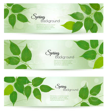 Nature banners with green spring leaves. Vector illustration.  Illustration