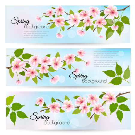 Three nature spring banners with blossoming cherry. Vector. Иллюстрация