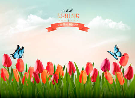 Spring nature  with colorful flowers and a butterfly.